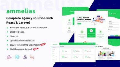 Ammelias v1.4 - Laravel React Agency CMS